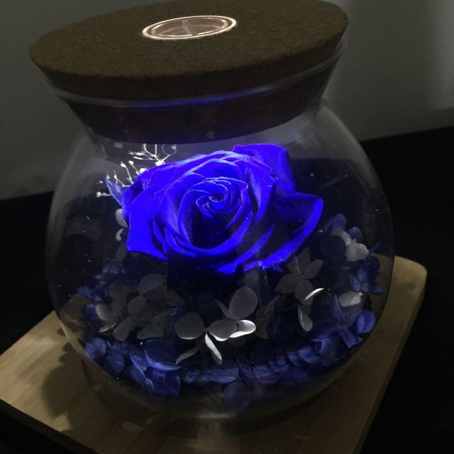 藍色永生花 不必澆水 可活2-3年