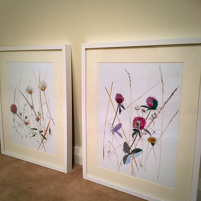 White Frames With Simplistic Floral Art