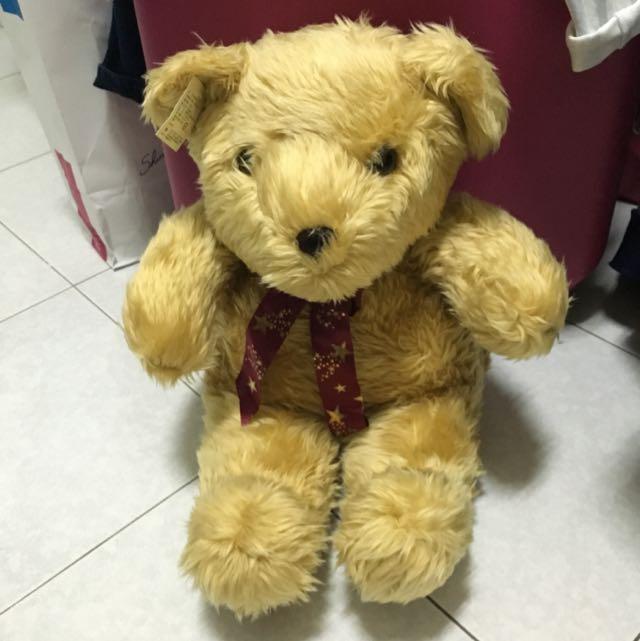熊熊娃娃 全新