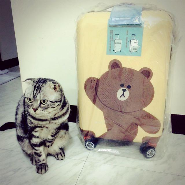 全新LINE FRIENDS 20吋熊大旅行箱