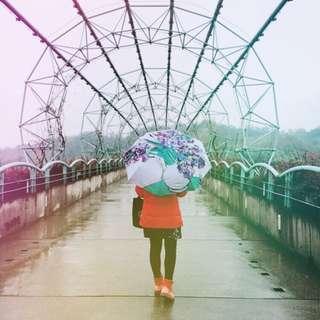 鳶尾花 自動 遮陽傘