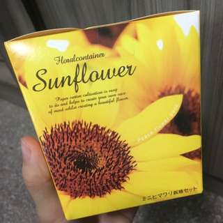 Floral Container - Sunflower