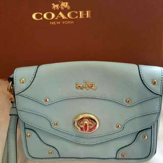 Coach (New) Hand Bag