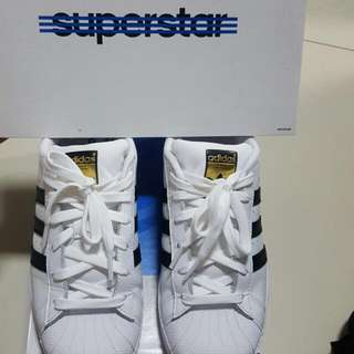 Adidas Superstar 金標