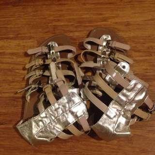 Gladiator Sandels