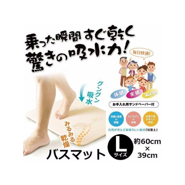 日本進口 Hiro 珪藻土 吸水地墊 速乾地墊 腳踏墊 L尺寸(40*60cm)