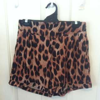 High Waisted Animal Print Shorts