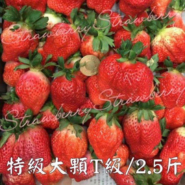 超大超好吃的草莓🍓🍓🍓