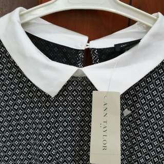 Brand New Ann Taylor Top With Tag