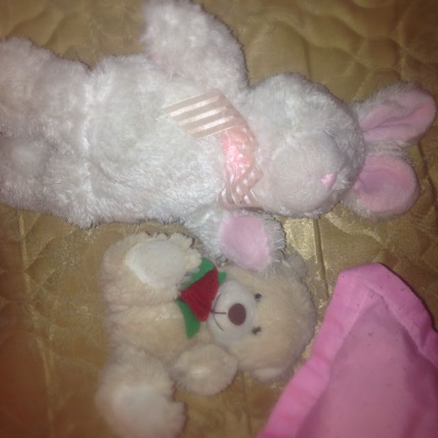 A Rabbit And Cute Teddy Bear
