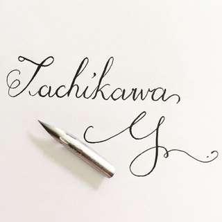 Brand New Tachikawa G Pen Nib