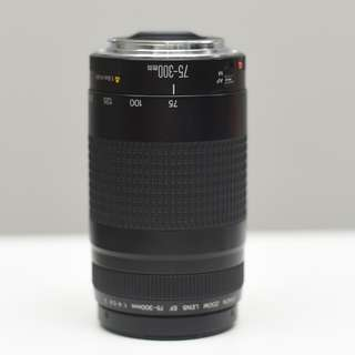 Canon 75-300mm (fungus and haze Defect)