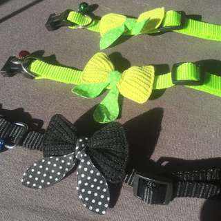 *On Sale* Pet Collar with Bow and Bell