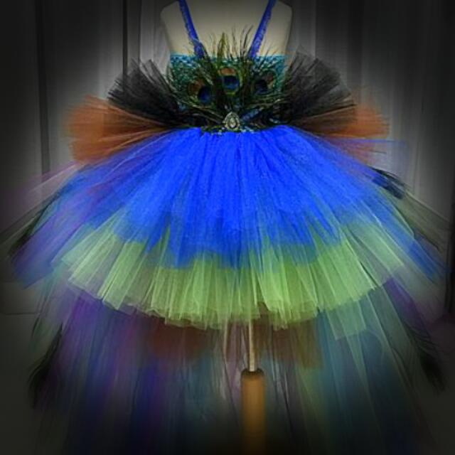 Prelove💙 👍Fancy TuTu Dress Witta Peacock Feathers Worn Once Only👍 Selling Near To Half D Price👌 Pm Me For Collection
