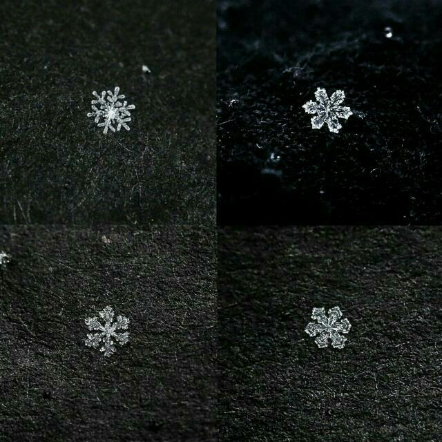 Authentic snowflakes from Switzerland