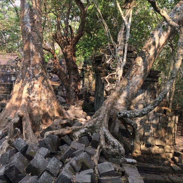 Daily Tour Around Angkor Wat With Car/Mini-van