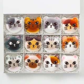 預購 日本 Felissimo 超可愛的貓咪棉花糖