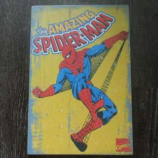 Retro Spiderman Wooden Display!!