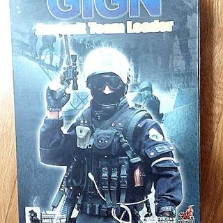 QUICK SALE - 1/6 Hot Toys Action Figure. Original And Rare. Out of production. GIGN Team LEADER