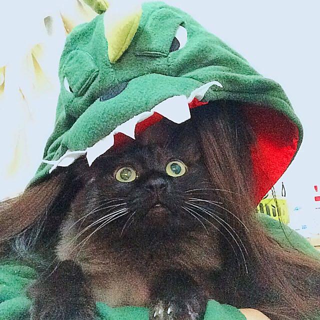 ✨居家必備-❤️ 超溫暖恐龍披肩 ❤️