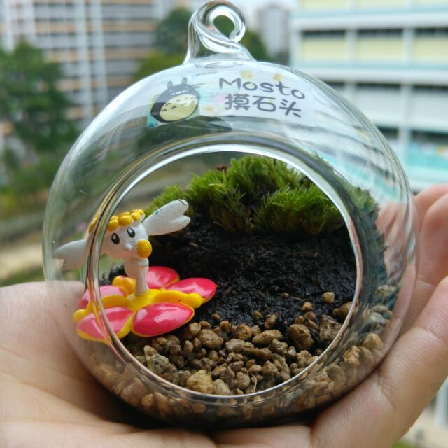 Flabebe Pokemon Mini Glass Ball Terrarium Gardening On Carousell