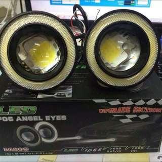 led projector sport light