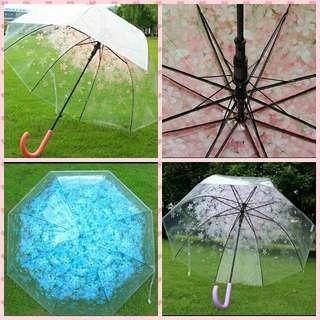 日系 小櫻花透明長柄雨傘
