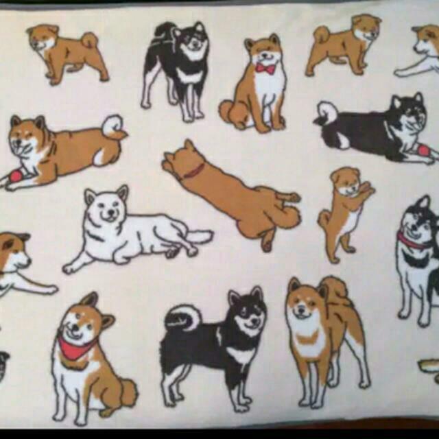 柴犬毛毯/珊瑚絨/毛毯/柴犬
