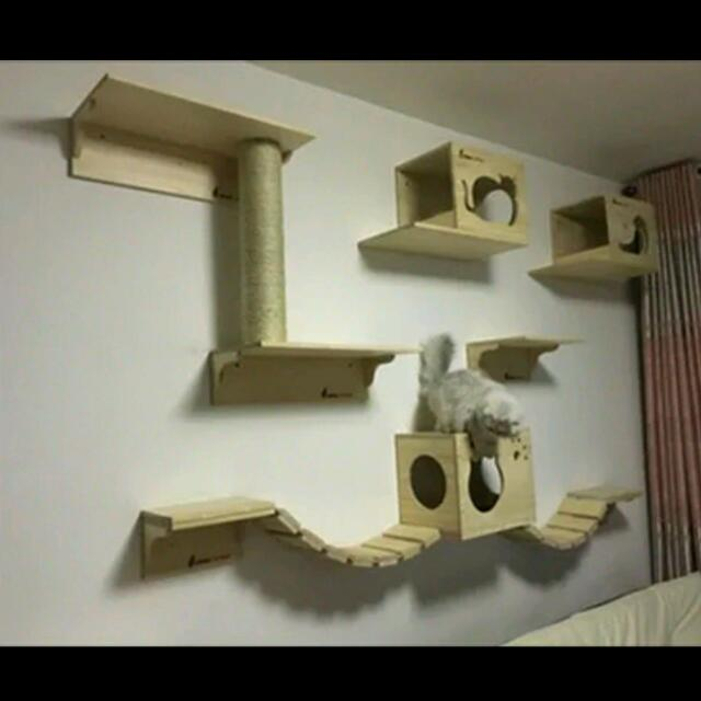 Custom Wall Mount Cat Furniture Wall Systems For Cats Cat Bridge Cat  Shelves Customized Cat Condos Cat Tree, Pets Supplies, Pet Accessories On  Carousell