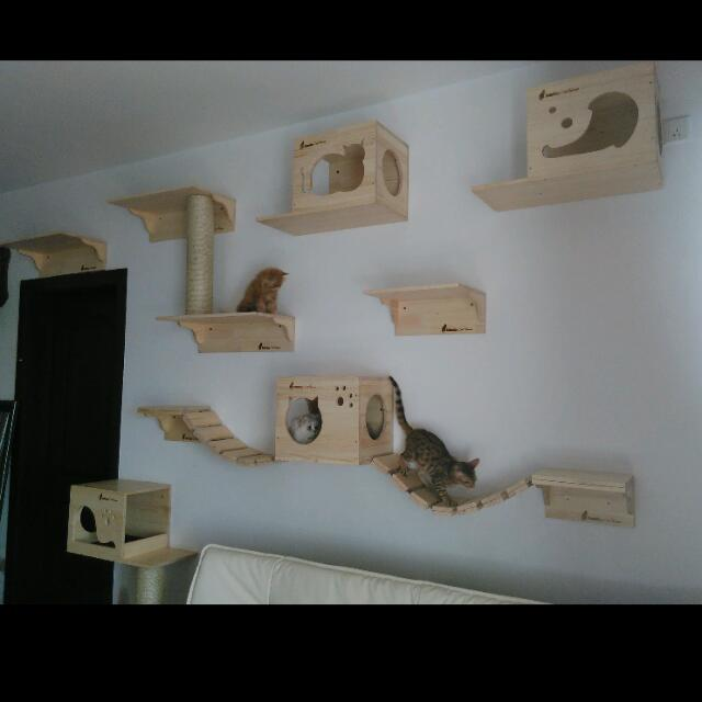 ... Custom Wall Mount Cat Furniture Wall Systems For Cats Cat Bridge Cat  Shelves Customized Cat Condos ...