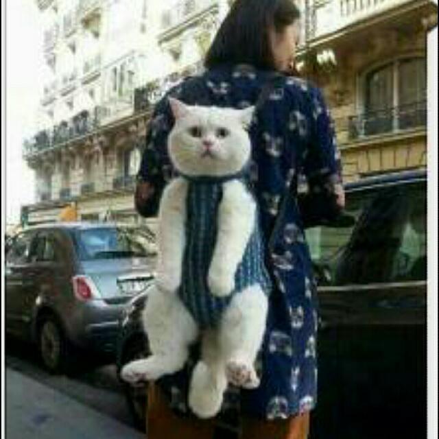 求購 仿真貓後背包