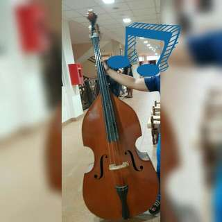 Double Bass (2 sets)
