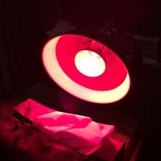 Pre loved Exo Terra + Red Infrared Bulb