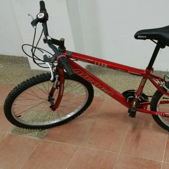 "20"" Rim Aleoca Bike"