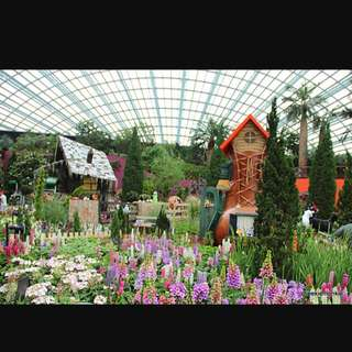Gardens by the Bay Admission Tickets (Flower Dome + Cloud Forest)