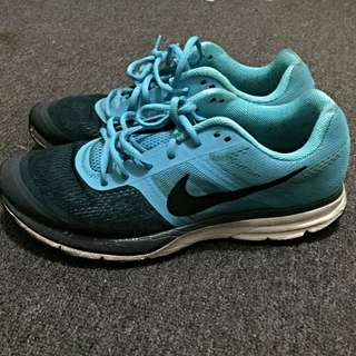 NIKE Pegasus 30 sport Shoes