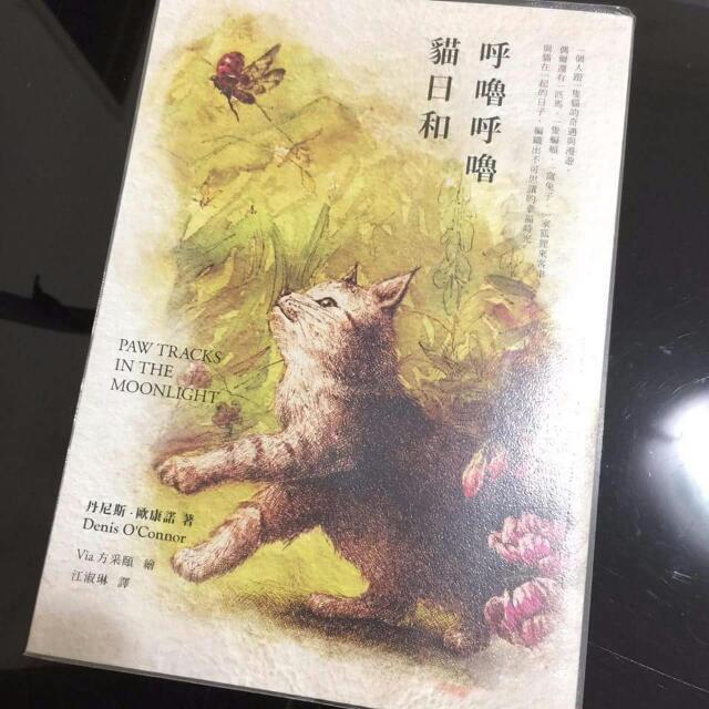 呼嚕呼嚕貓日和 小說