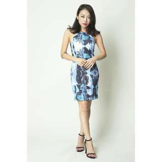 Vgy Amelina Fitted Dress (BN)