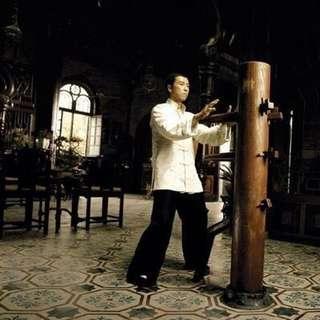 詠春拳 木人樁 實木 吸盤式