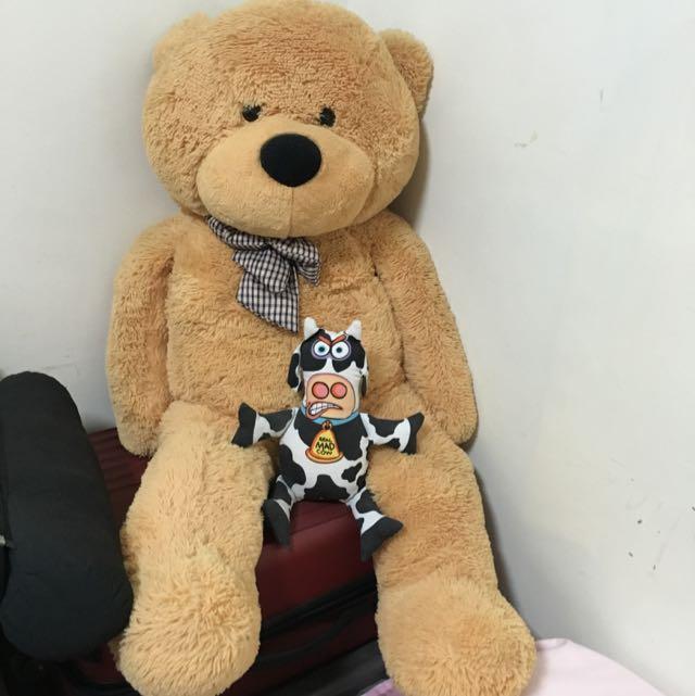 二手-巨大熊熊