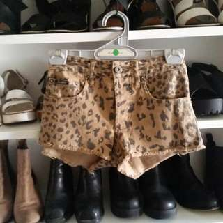 Bardot Leopard Shorts