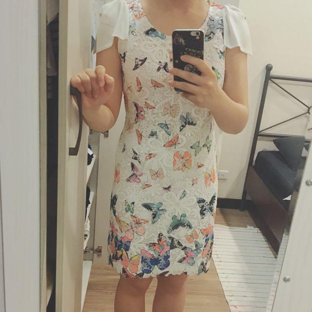全新 蕾絲 蝴蝶洋裝 安婕蕾妮