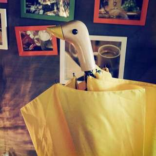 美國鴨頭嘴雨傘  自動折疊晴雨傘