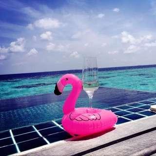 夏天玩水必備紅鶴漂浮手機座飲料座泳池