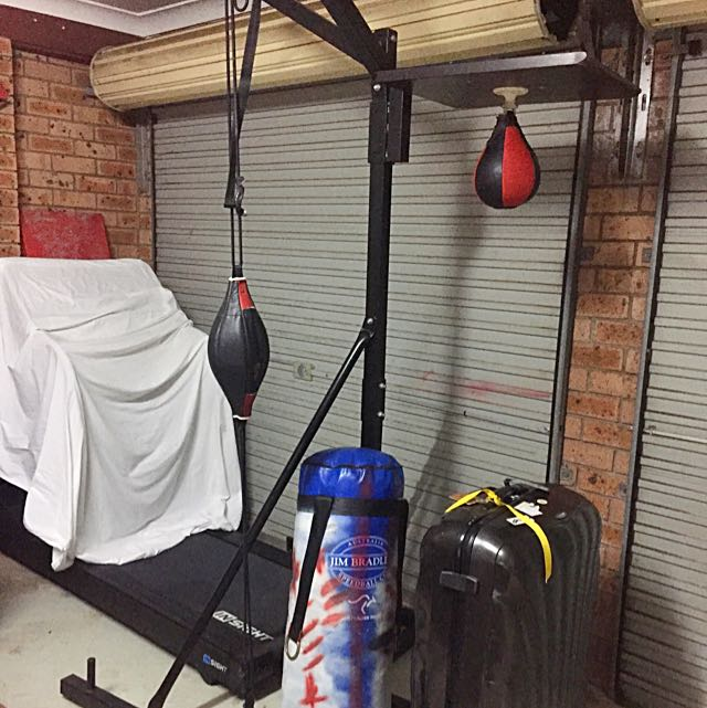 Boxing Stand + Speed Balls