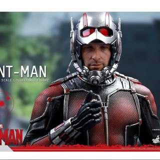 「現貨」Hot Toys – MMS308 –【蟻人】史考特.朗恩 1/6 比例 Ant-Man