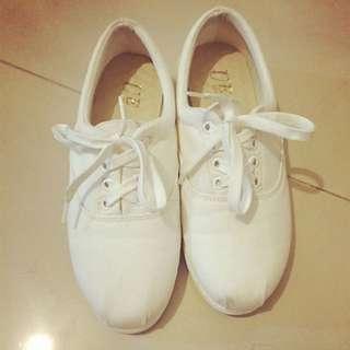 小白鞋24 號