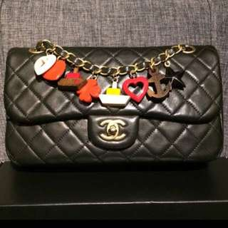 Chanel Limited Edition Charms Bag