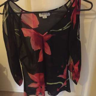 Sheer Top With Slits On The Arms Size 12