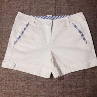 Bear Two 藍白條紋滾邊白色百搭休閒短褲 38號 X-XL 全新專櫃正品